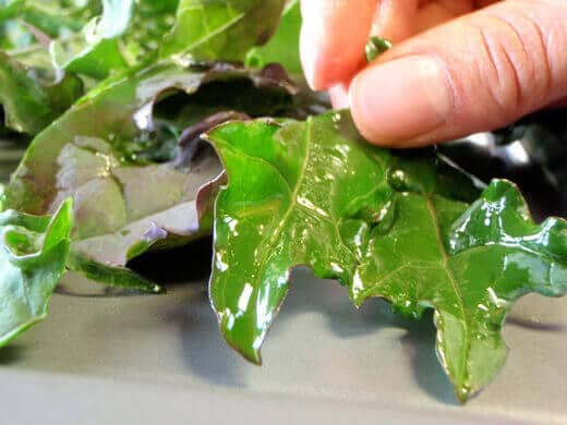 Lightly coat kale leaves with olive oil