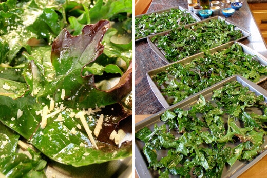 Oiled and seasoned kale leaves