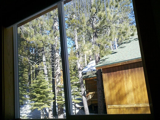 Waking up to a forest view