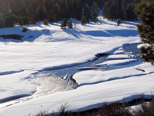 Prosser Creek