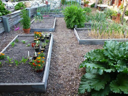 Main level of vegetable garden