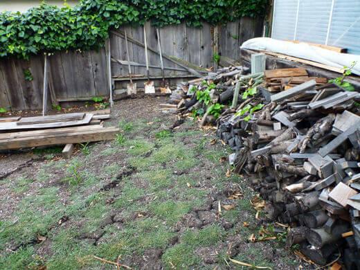 Weedy lower yard