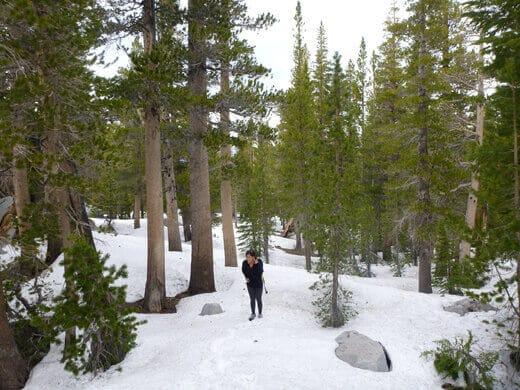 A snow-covered John Muir Wilderness