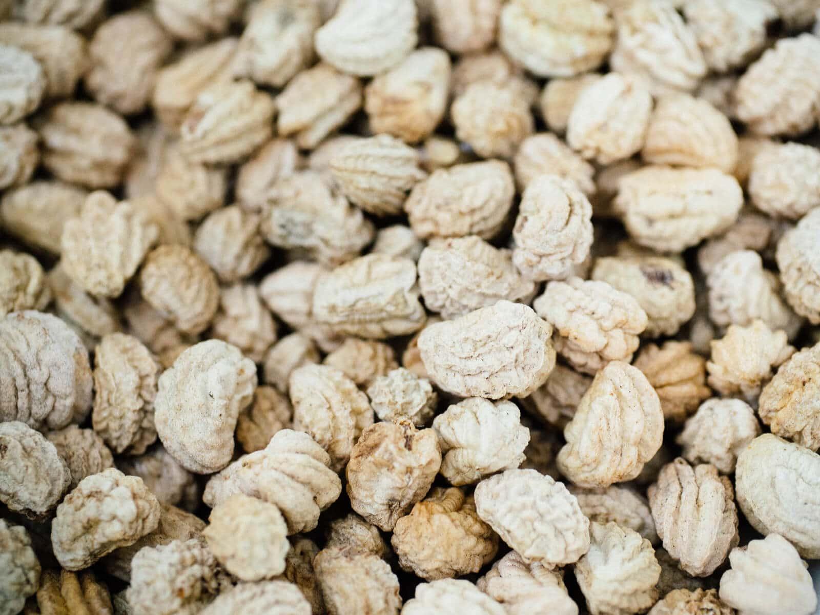 Saving nasturtium seeds