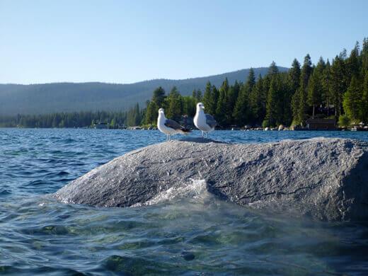 North Shore of Lake Tahoe