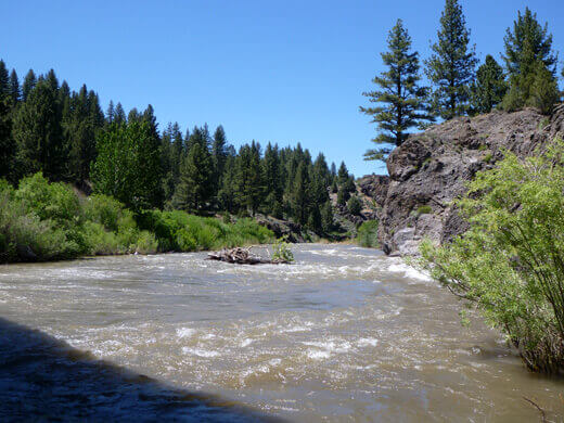East Fork of the Carson River