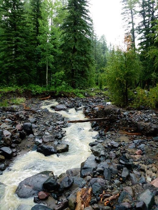 Rocky, fast-flowing creek
