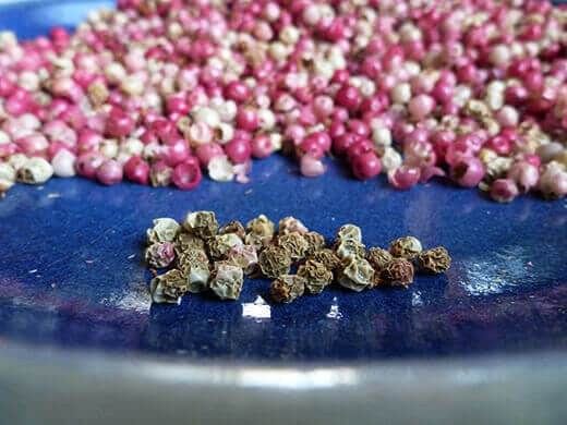 Bleached and dried pink peppercorns