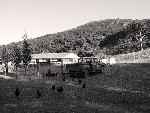 Dare 2 Dream Farms