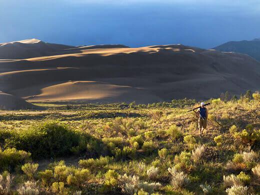 Post-monsoon glow on the dunes
