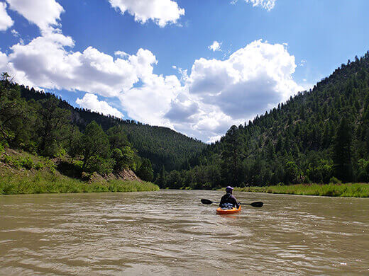 Paddling through the evergreen-filled Chama Canyon