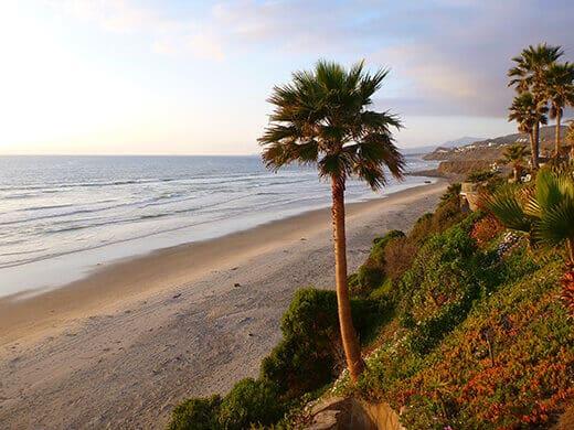 The Gold Coast of Baja