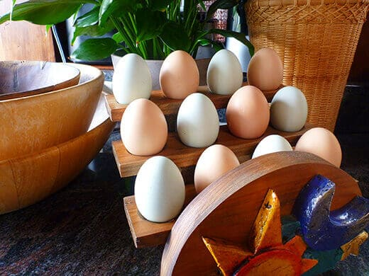 Fresh eggs in a wooden egg holder