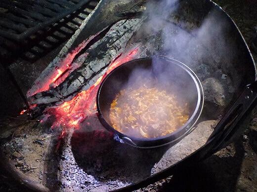 Dutch oven beef stroganoff