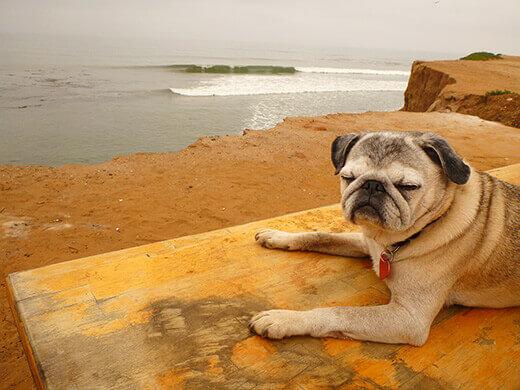 Life is simple in Baja