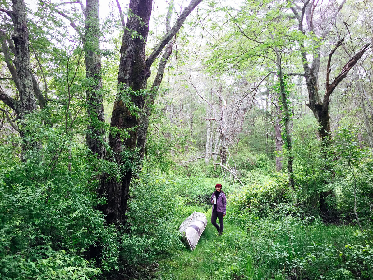 Take a walk in the woods to get the benefits of serotonin-boosting Mycobacterium vaccae