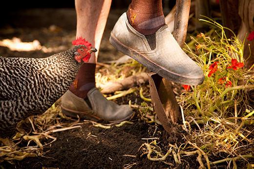 Wearing the Bogs Burnside loafers