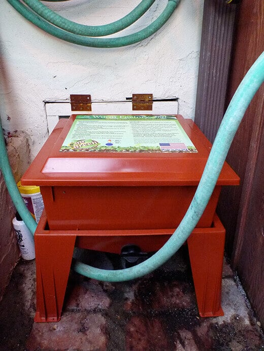 Place worm bin in a protected area outside