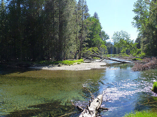 River tributary