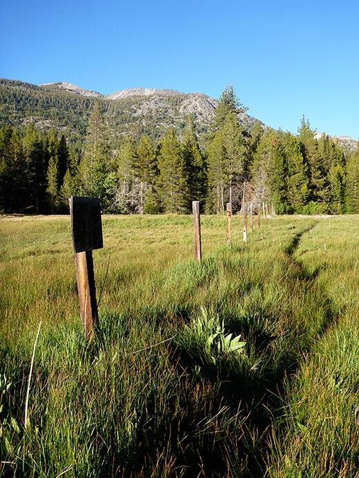Trail to Blayney Hot Spring
