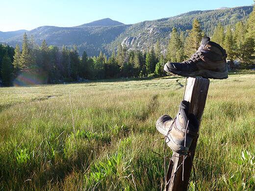 Solitude in Blayney Meadow