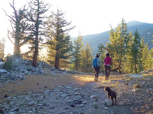 Starting the hike back to basecamp