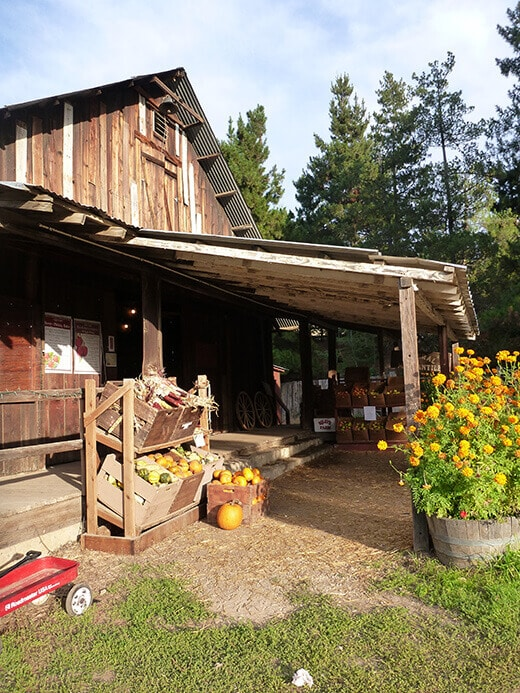 General store at Riley's Farm