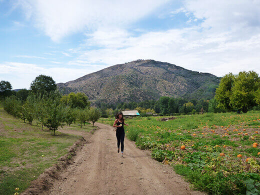 Wandering around Riley's Farm