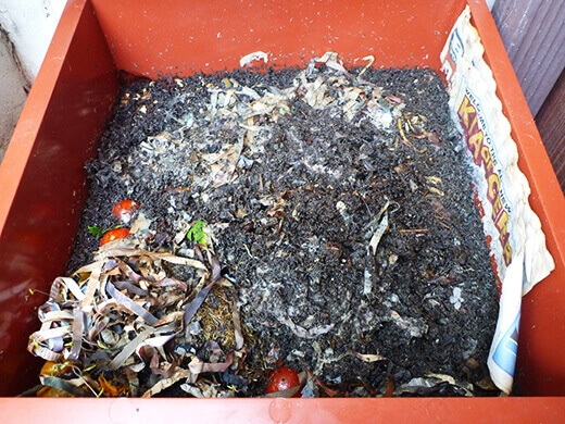 A healthy compost pile filled with worm castings and other organic matter