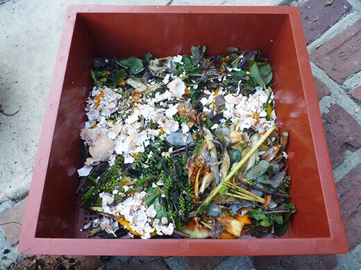 Add food scraps to the bottom layer of the second tray