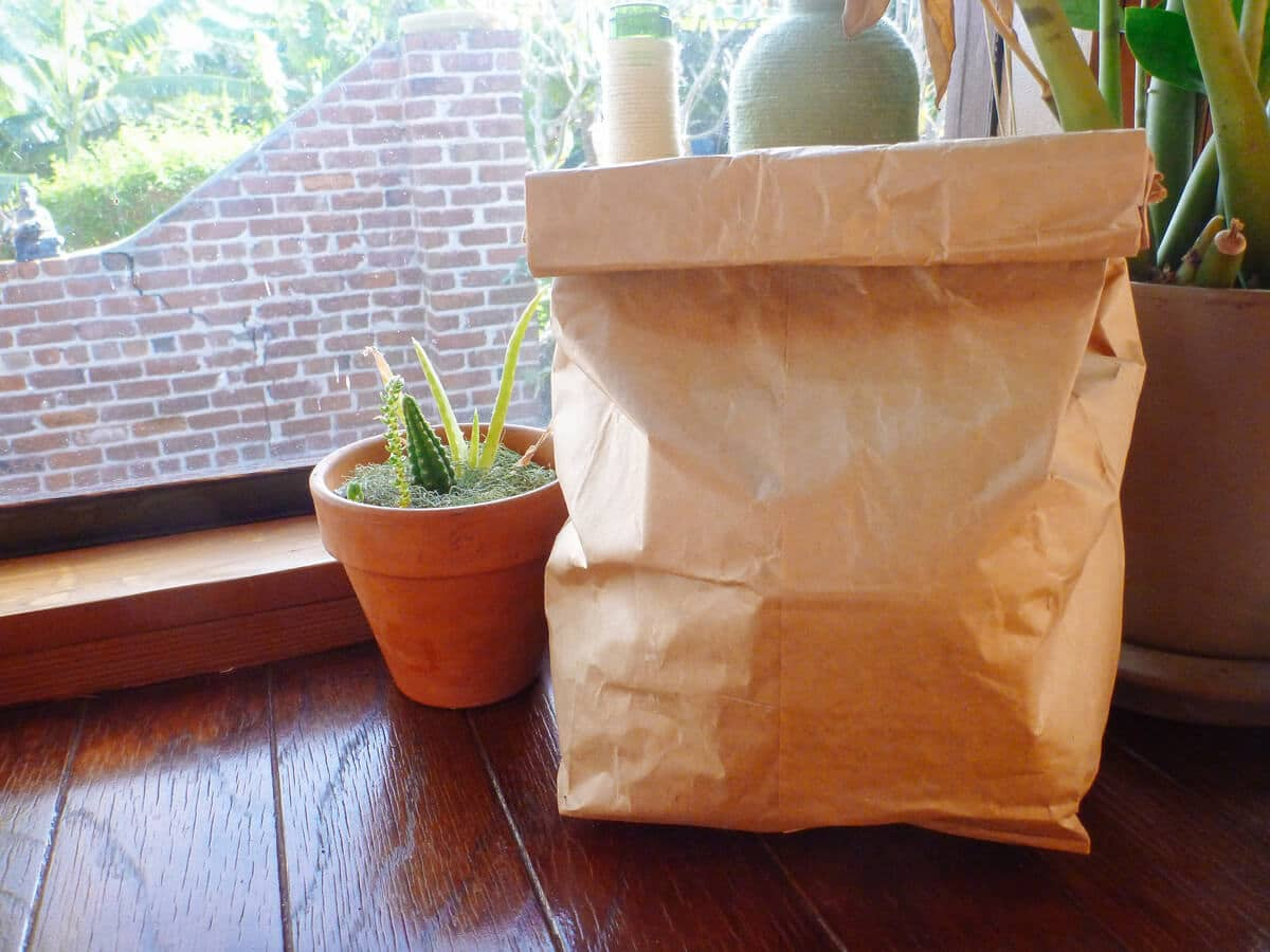 Speed up ripening by placing avocados in a paper bag