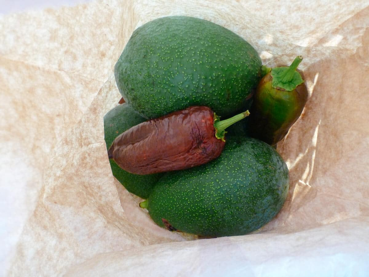 Keep avocados with other ethylene-producing fruits to speed up ripening time