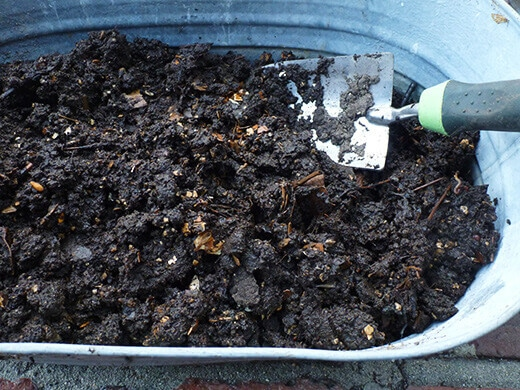 Finished worm compost