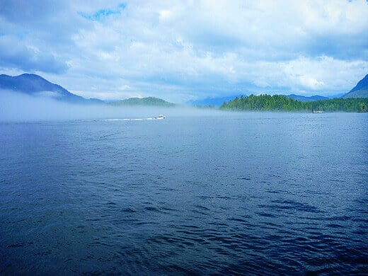 Summer fog on the west coast of Vancouver Island.