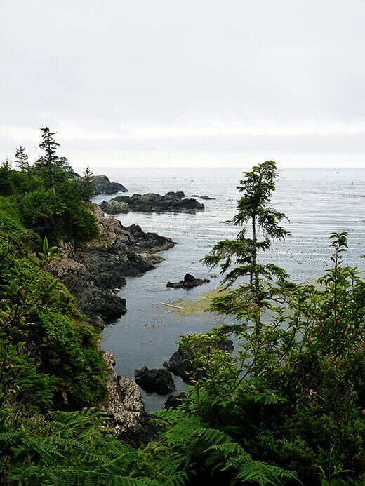 Rugged ocean coastline in Ucluelet.