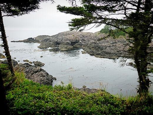 Barkley Sound on Vancouver Island.