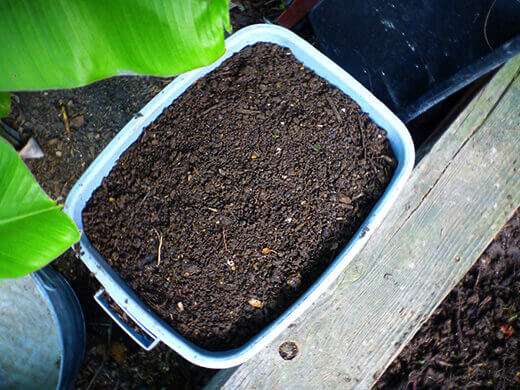 A bin of sifted compost