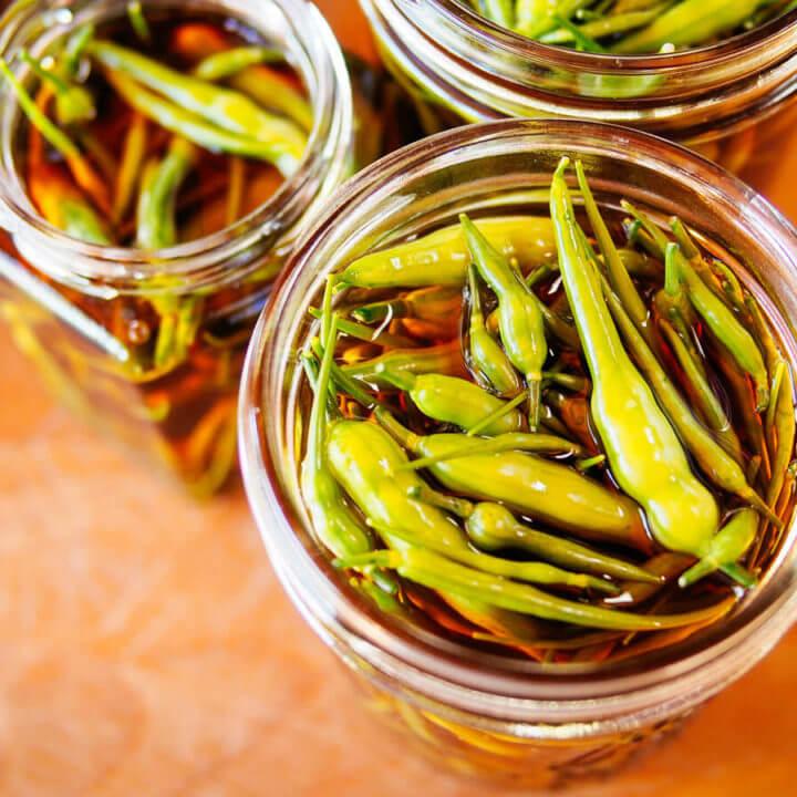 Pickled radish seed pods