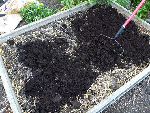 Amending clay soil with compost