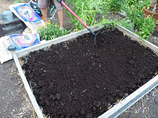 Bu's Blend Biodynamic Compost layered on top of garden bed