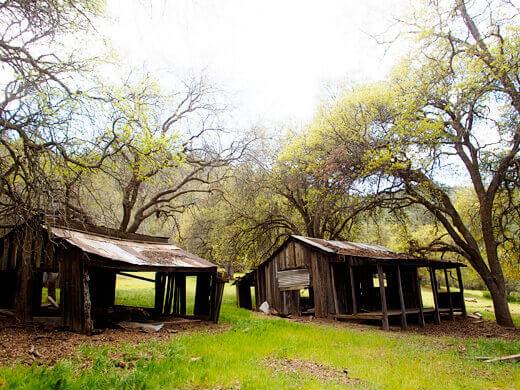 Rundown cabins
