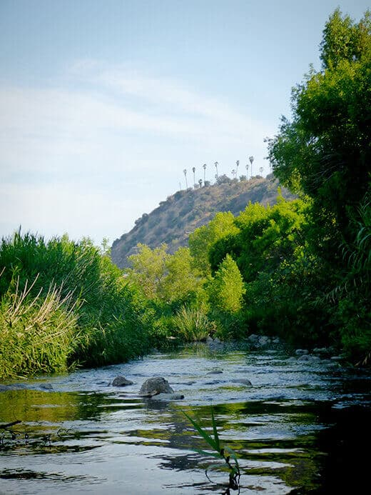 Urban kayaking on the Los Angeles River