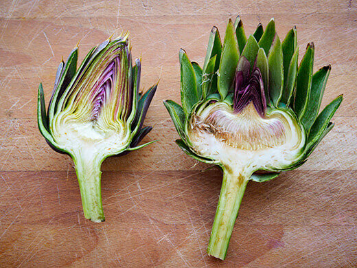 Comparison of a young and a mature artichoke bud