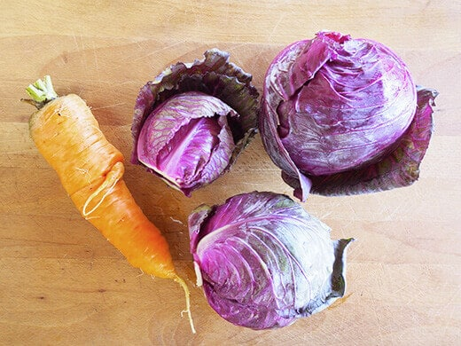 Chantenay Red Core carrot and Mammoth Red Rock cabbage