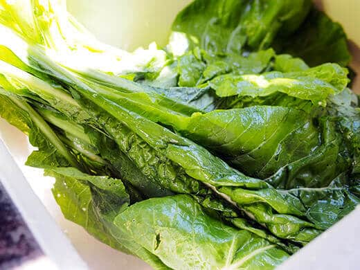 Komatsuna mustard greens