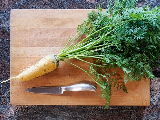 Freshly harvested carrot with greens