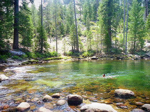 Swimming in the Merced River