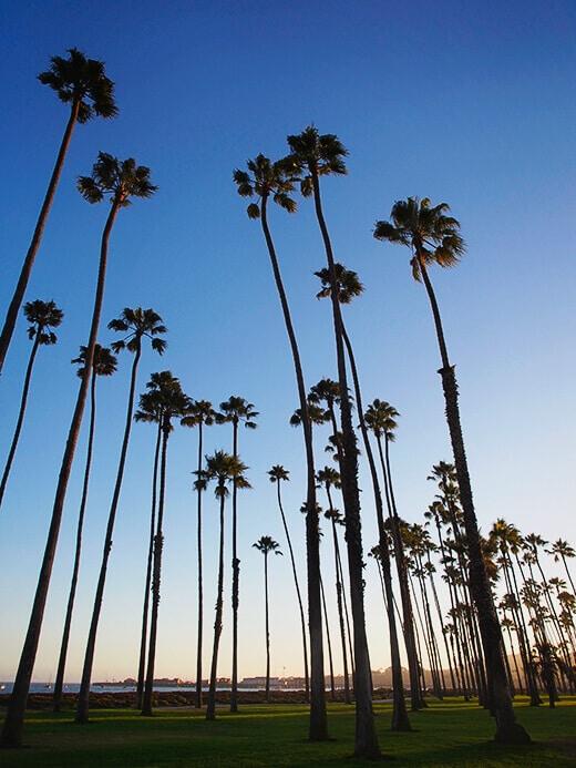 East Beach in Santa Barbara