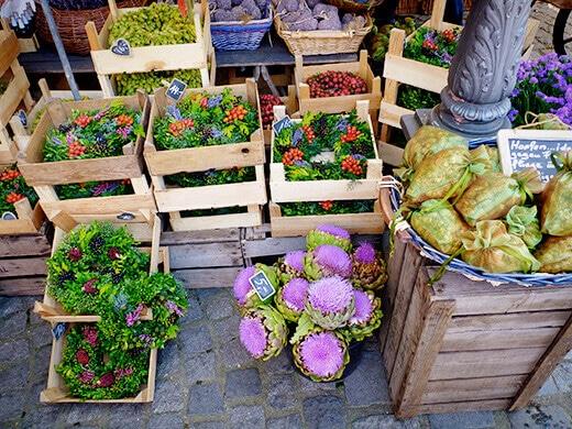 Artichoke flowers and wreaths