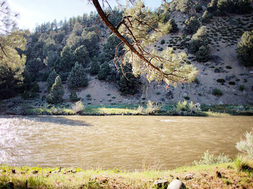 The East Fork Carson in spring
